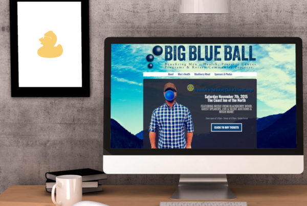 Big Blue Ball Web Design 2014