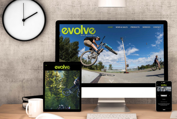 Evolve Website Design 2015